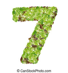 Number 7 made from hydroponics leaf vegetable isolated on white background