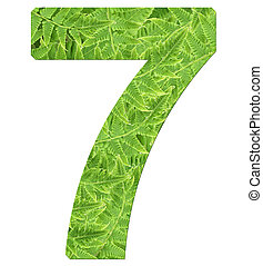 number 7 with fern texture, isolated on white background, font Helvetica World, bold