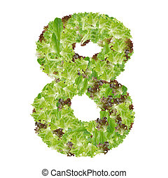 Number 8 made from hydroponics leaf vegetable isolated on white background