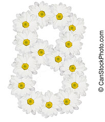 Number 8 made from white flower