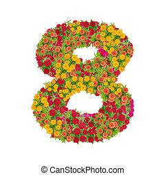number 8 made from Zinnias flowers isolated on white background. Colorful zinnia flower put together in number two shape with clipping path
