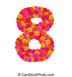 number 8 made from Zinnias flowers