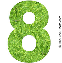 number 8 with fern texture, isolated on white background, font Helvetica World, bold