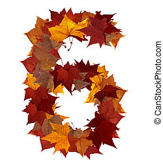 Number six multicolored fall leaf composition isolated