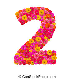 Numbers 2 made from Zinnias flowers