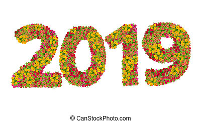 Numbers 2019 made from Zinnias flowers isolated on white background with clipping path. Happy new year concept