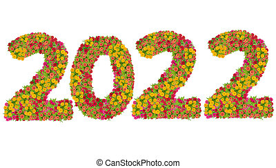 Numbers 2020 made from Zinnias flowers isolated on white background with clipping path. Happy new year concept