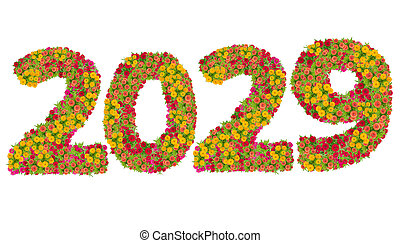 Numbers 2029 made from Zinnias flowers isolated on white background with clipping path. Happy new year concept