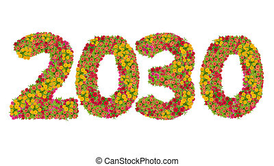 Numbers 2030 made from Zinnias flowers isolated on white background with clipping path. Happy new year concept