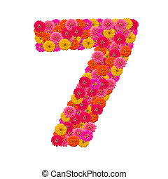 Numbers 7 made from Zinnias flowers