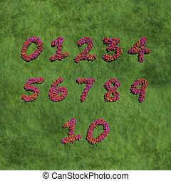 numbers create by red color flowers with grass