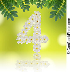 Numbers four made of tropical flowers frangipani (plumeria) on n