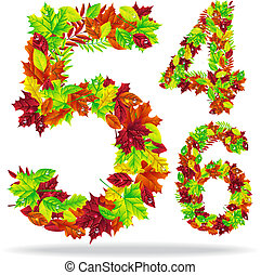 numbers of autumn leaves