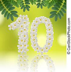 Numbers ten made of tropical flowers frangipani (plumeria) on na