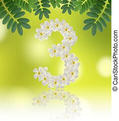 Numbers three made of tropical flowers frangipani (plumeria) on