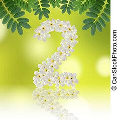 Numbers two made of tropical flowers frangipani (plumeria) on na