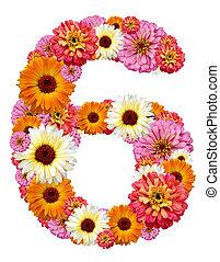 numeral, árabe, seis
