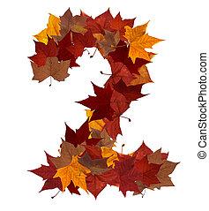 numere dois, multicolored, folha baixa, composição, isolado