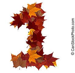 numere um, multicolored, folha baixa, composição, isolado