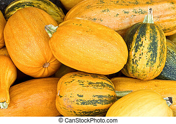 Numerous natural pumpkins - Close-up on numerous natural...
