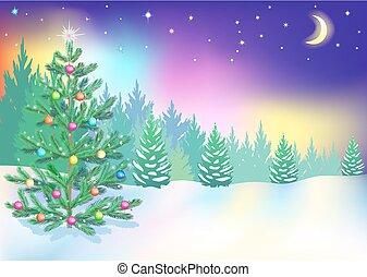 nuovo, lights., settentrionale, anno