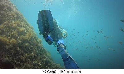 nurki, pływacki, morze, podwodny