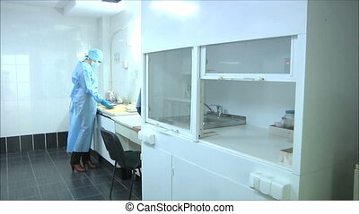 nurse working in the laboratory