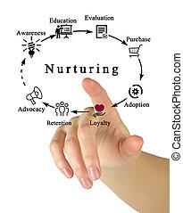 Nurturing
