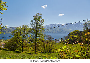 Nussdorf at lake Attersee with meadows and mountains