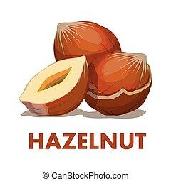 Hazelnut - Nut food. Hazelnut isolated on white background. ...
