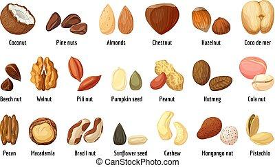 Nut icons set, cartoon style