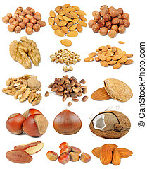 A nut set including hazelnuts, almonds, walnuts, peanuts, pine nuts, coconut, brazil nuts and chestnuts isolated on white background