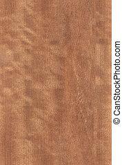 nut wood texture