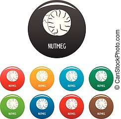 Nutmeg icons set color