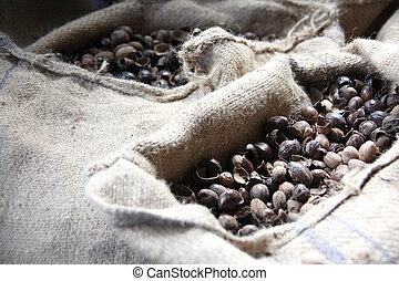 Nutmeg seeds. - Nutmeg seeds in sacks in the caribbean.