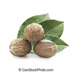 nutmeg  - Nutmeg on a white background with a leaf
