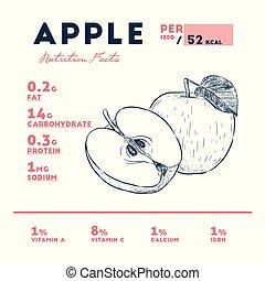 nutrição, desenhar, maçã, esboço, mão, vector., fatos
