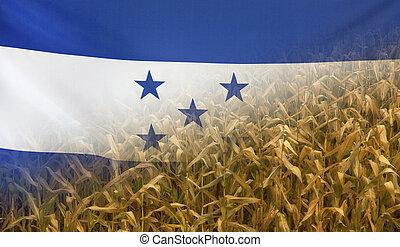 nutrición, concepto,  honduras, tela, maíz, campo, bandera