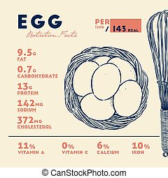 Nutrition Fact of Egg, Hand draw sketch vector.