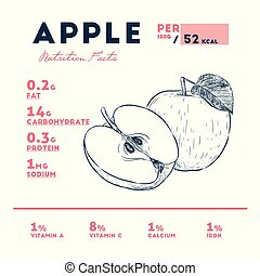 Nutrition facts of apple, hand draw sketch vector.