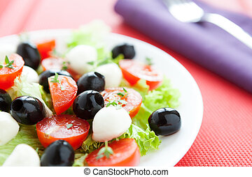 Nutritious salad with fresh tomatoes and mozzarella