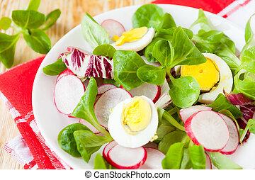 nutritivo, fresco, salada, com, ovo, e, rabanete