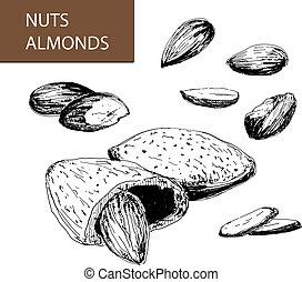 nuts., almendras