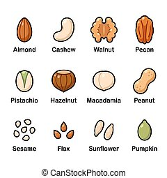 Nuts and seeds icon set. Cartoon color icons, isolated vector clip art illustration.