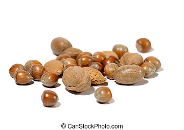 Nuts! - Different kinds of isoated nuts