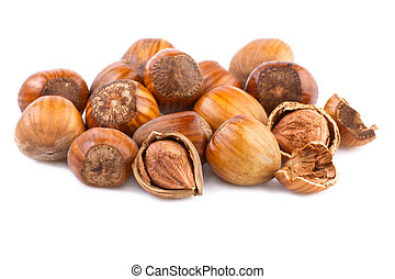 nuts filberts isolated on white background
