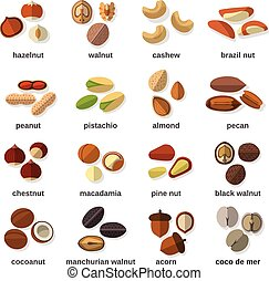 Nuts Flat Icons Set - Nuts flat icons set with hazelnut...