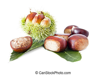 nuts, fruits of autumn