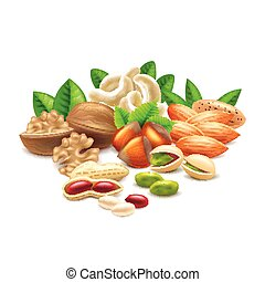 Nuts isolated on white vector - Nuts isolated on white...