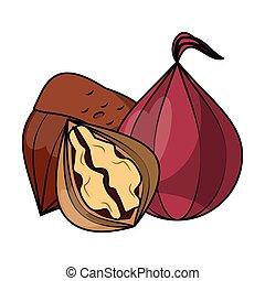 Nuts natural food cartoon